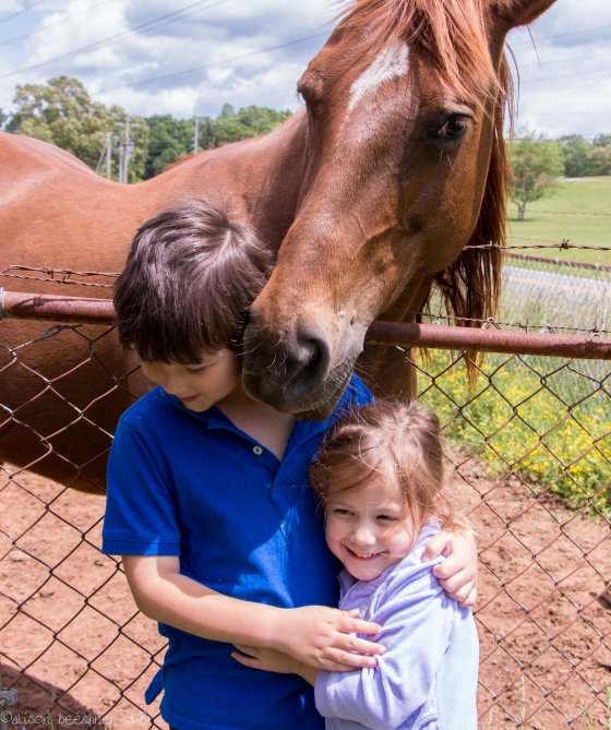 Children nuzzled by horse